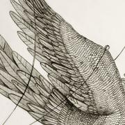 "Detail of artwork entitled ""Free as a bird"" by Tesura"