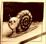 "Artwork by Tesura entitled ""A Snail"""